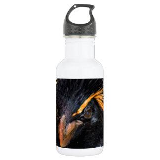 rockhopper penguin stainless steel water bottle