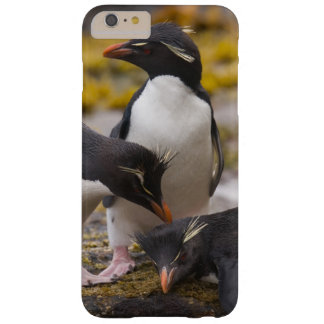 Rockhopper penguins communicate with each other barely there iPhone 6 plus case