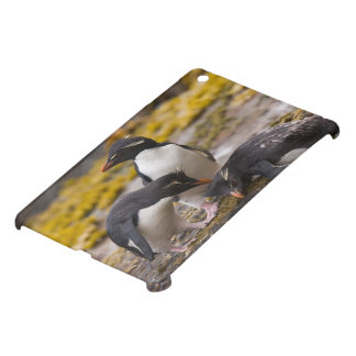 Rockhopper penguins communicate with each other cover for the iPad mini