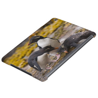 Rockhopper penguins communicate with each other iPad air covers