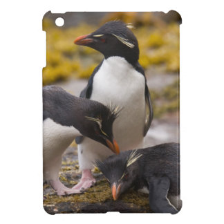Rockhopper penguins communicate with each other iPad mini cases