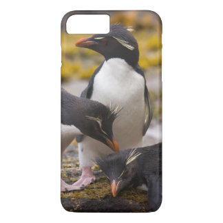 Rockhopper penguins communicate with each other iPhone 7 plus case