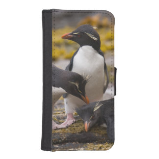 Rockhopper penguins communicate with each other iPhone SE/5/5s wallet case