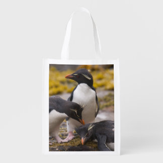 Rockhopper penguins communicate with each other reusable grocery bag
