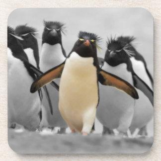 Rockhopper Penguins Drink Coaster