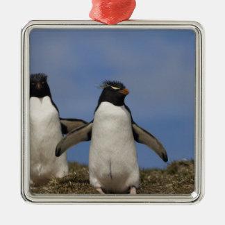 Rockhopper Penguins Eudyptes chrysocome Metal Ornament