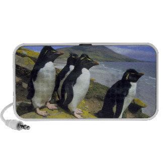 Rockhopper Penguins, (Eudyptes chrysocome), iPod Speakers