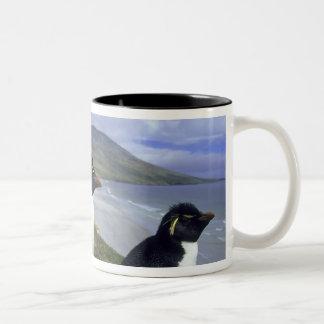 Rockhopper Penguins, (Eudyptes chrysocome), Two-Tone Coffee Mug