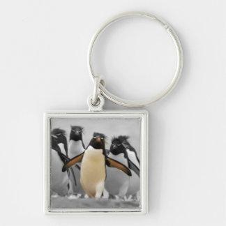 Rockhopper Penguins Key Chain