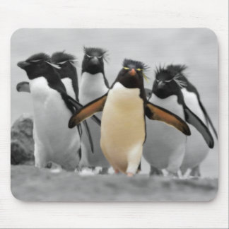 Rockhopper Penguins Mouse Pad
