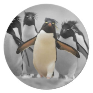 Rockhopper Penguins Plate