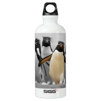 Rockhopper Penguins Water Bottle