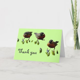 Rockin' Robins Thank You Card
