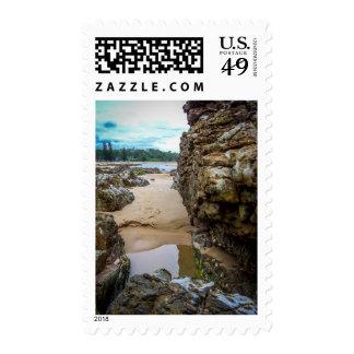 Rockpool - Stamp