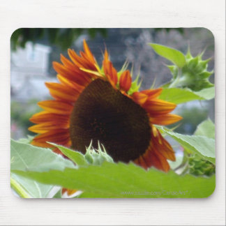 Rockport Red Sunflower Mousepad
