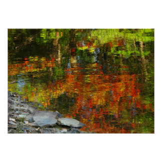 Rocks and Autumn Reflections Poster