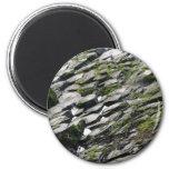 Rocks and Moss Refrigerator Magnets