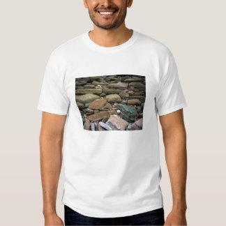 Rocks at the base of a sea cliff, Bungan Beach. T-shirt