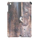 Rocks In Log Case For The iPad Mini