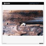 Rocks In Logs Decal For MacBook