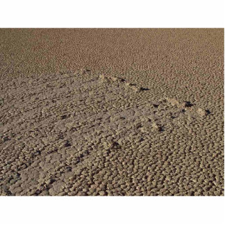Rocks In Mud Tracks Photo Sculpture