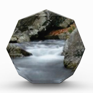 rocks in the creek award
