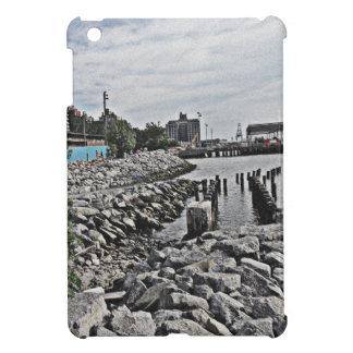 Rocks.jpg iPad Mini Case