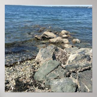 Rocks on Pacific Northwestern beach. Bellingham WA Poster