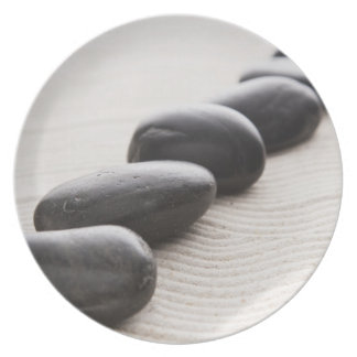 Rocks on sand dinner plate