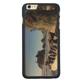 Rocks & Sea Stacks at Ruby Beach Carved® Maple iPhone 6 Plus Slim Case