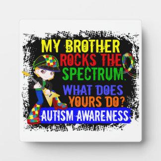 Rocks Spectrum Autism Plaque