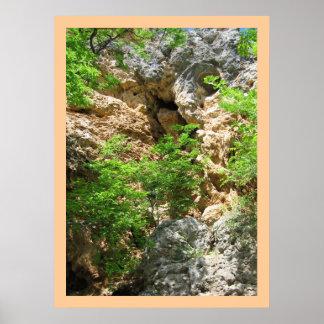 Rocks & Spring Foliage Poster