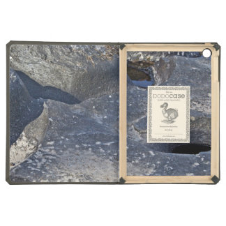 Rocks With Water Holes iPad Air Cases