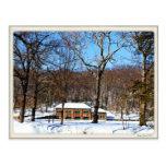 Rockwell Park, Bristol CT Postcard
