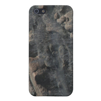 Rocky 4/4s  case for iPhone SE/5/5s