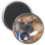 Rocky and Laila Refrigerator Magnet