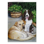 """""""Rocky and Teddy"""" Greeting Card"""