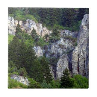 Rocky Backcountry Tile