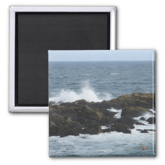 Rocky Coast in York Maine Refrigerator Magnet