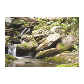 Rocky Creek 3 Canvas Print