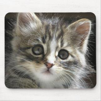 Rocky el gatito Mousepad