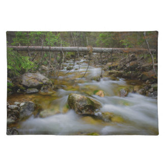 Rocky forest creek placemat