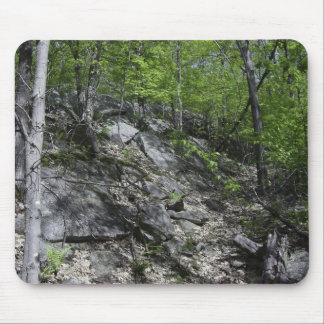 Rocky Forest Mousepad