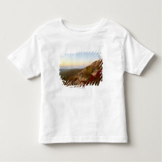 Rocky Hillside, Red Flowers, Acadia National Park Toddler T-shirt