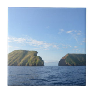 Rocky islands small square tile