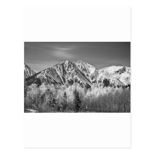 Rocky Mountain Autumn High In Black and White Postcard