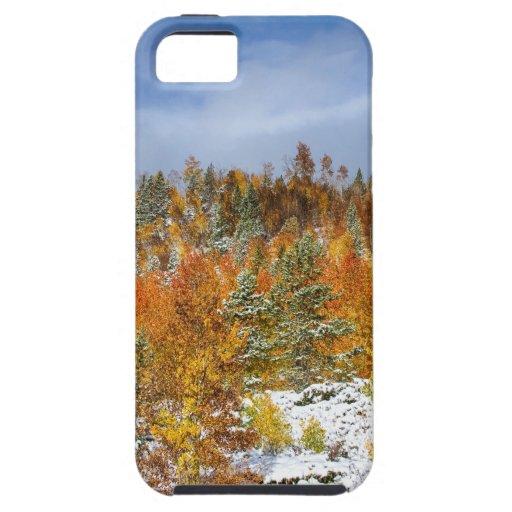 Rocky_Mountain_Autumn_Storm.jpg iPhone 5 Fundas
