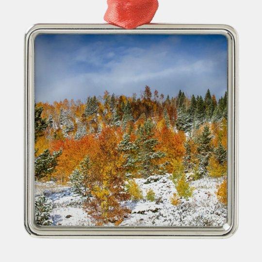 Rocky_Mountain_Autumn_Storm.jpg Metal Ornament