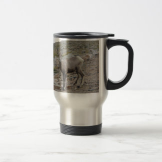 Rocky Mountain Big Horn Sheep Ewe Travel Mug