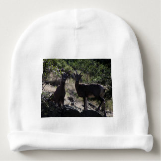 Rocky Mountain Bighorn Sheep Baby Beanie